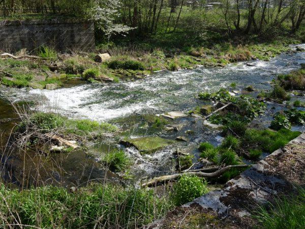 kleiner Wasserfall im Reiserschen Tal