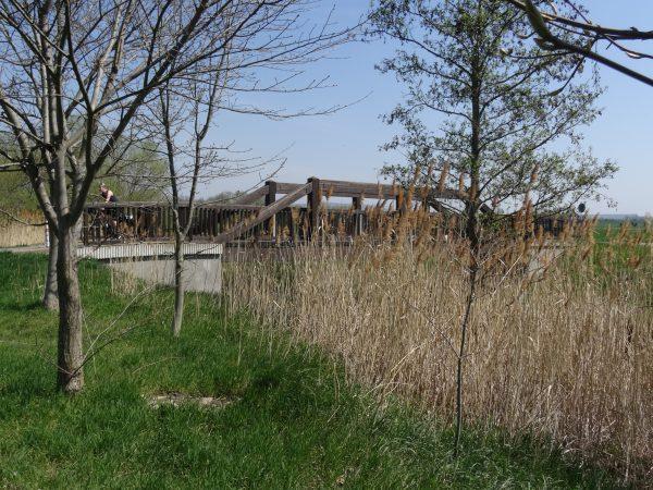 Lossabrücke bei Büchel