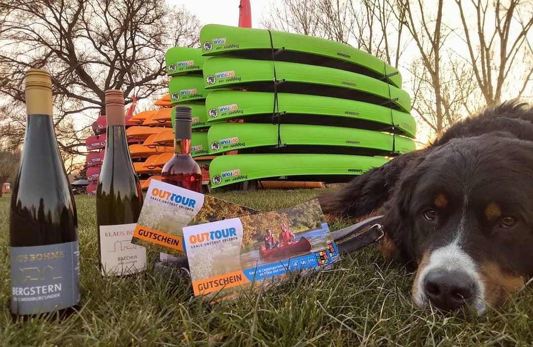 Gutschein, Wein, Kanu und Hund an der Unstrut